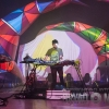 1310_animalcollective_0078